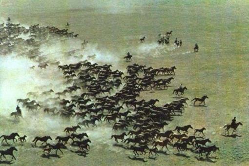 70年代的新疆伊犁物产丰富风景优美历史老照片