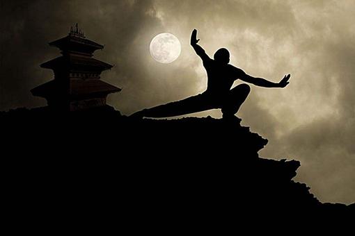 为什么感觉很高深的传统武术,一到正规比赛就变成王八拳了?