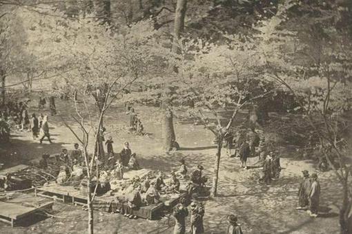 日本明治维新以前在世界上处于什么水平?制度相当于中国汉朝时期