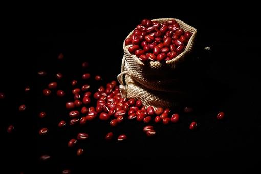 红豆在古代具有哪些意思?不仅代表相思之情