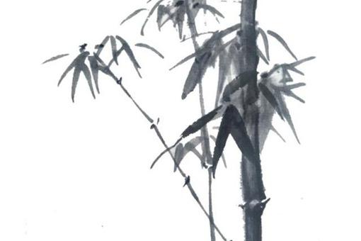 宁可食无肉不可居无竹是什么意思?古人为何偏爱竹子?