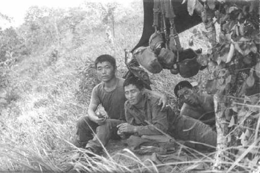 韩国在越南战争中犯下了哪些暴行?残杀上万平民,留下数万混血儿