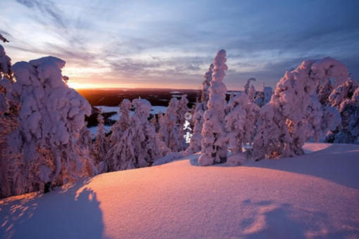写大雪的诗有哪些?描写大雪的诗20首