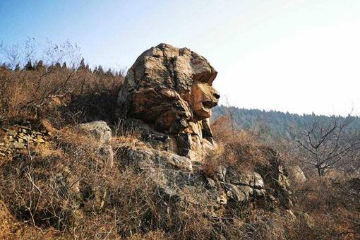 济南现狮身人面像是怎么回事?狮身人面像是如何形成的?