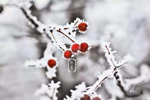2019冬至是哪一天?冬至吃什么要注意什么问题?