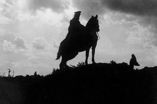 骡马在第一次世界大战期间起到了什么作用?战后的结局是怎样的?