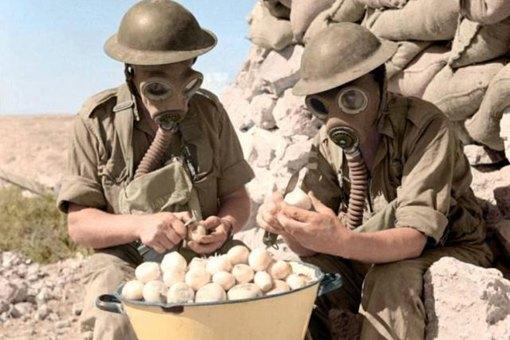 二战时期,德国日本为何不对英美苏使用毒气?