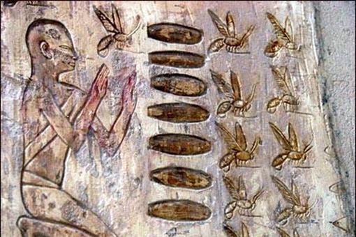 古代人的假牙使用什么做的?揭秘古代一些奇葩的事实