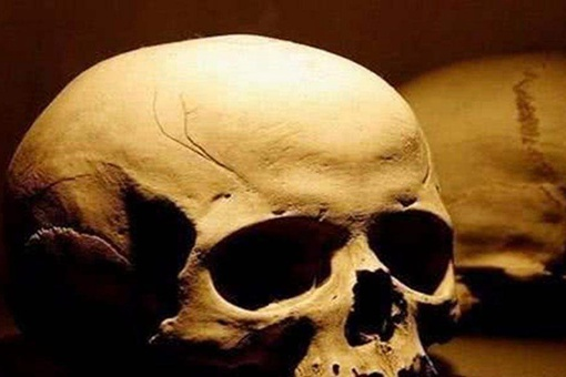 王莽的头颅的秘密是what?王莽的头颅被收藏之谜