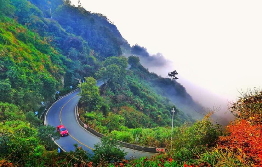 十大最美农村路 十大最美农村路照片