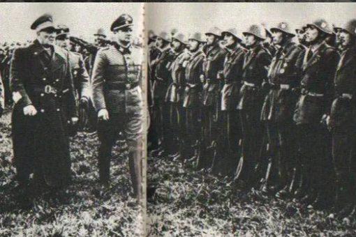 党卫军第29掷弹兵师简介 党卫军第29师长是谁?