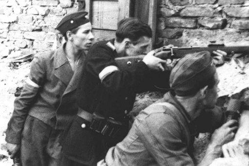 波兰国内军在敌后活跃多年