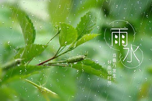 雨水节气的含义是什么意思 雨水节有什么特点