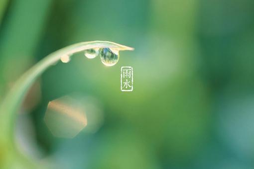 雨水节气介绍 二十四节气之雨水介绍