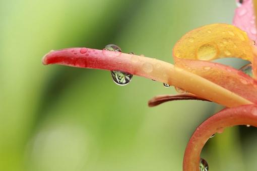 为什么每年开学总是下雨 为什么一开学就下雨