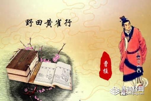 曹植野田黄雀行原文翻译赏析