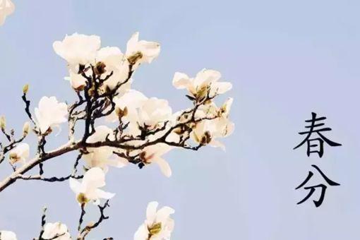 春分的风俗活动和寓意