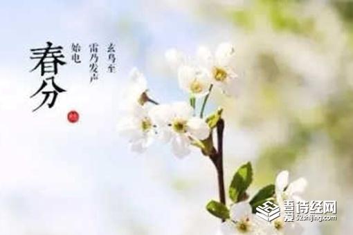 春分诗词民谚俗语 关于春分谚语有哪些