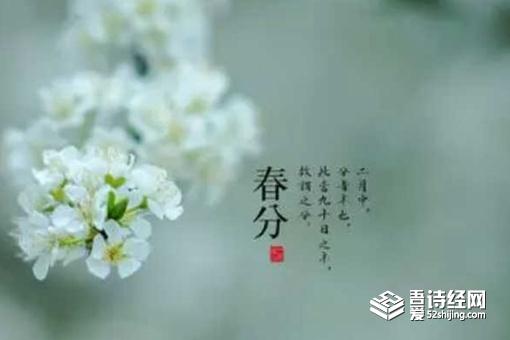关于春分的优美句子 春分节气古诗五言四句