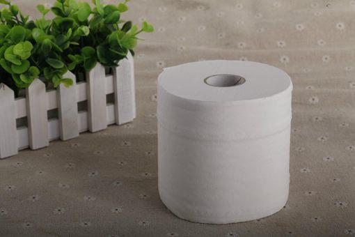 卫生纸之乱是什么意思 卫