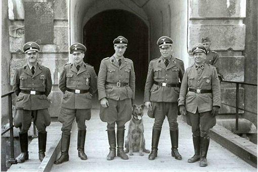 纳粹德国军服是希特勒设计的军服吗 希特勒为何重视军服的设计