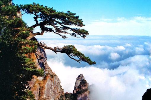 哪句诗描写的是庐山的景色