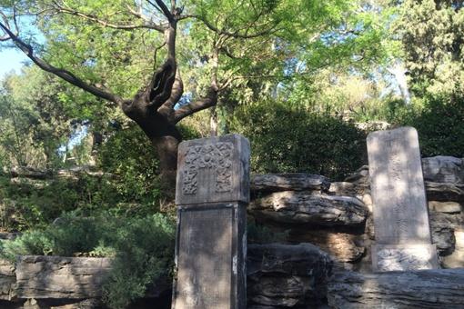 崇祯皇帝吊死的歪脖树在景山哪里