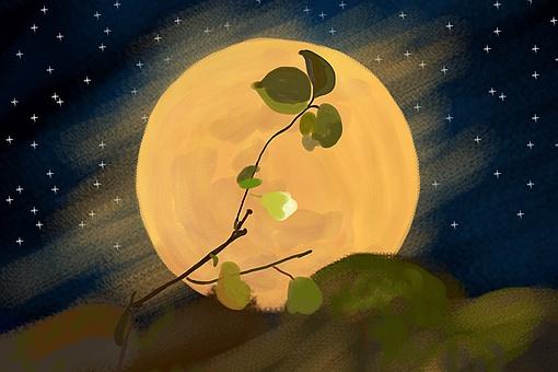 千里共婵娟和露似真珠月似弓哪句诗词描写的是中秋的月亮(含答案)